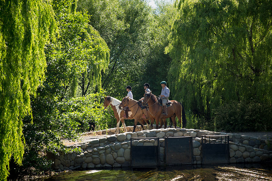 Horseback riding adventure at the Patagonia River Ranch